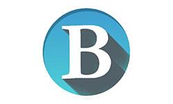 logo-burnoutnetzwerk